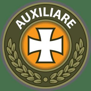 PRODUSE AUXILIARE